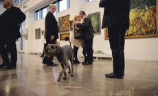 Wystawa Grzegorza Steca w NCK